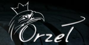 Wulkanizacja, serwis opon Orzeł w Poniatowej