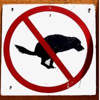 Problem sprzątania psich odchodów