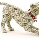 Opłata za psa w Poniatowej