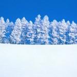 Początek zimy